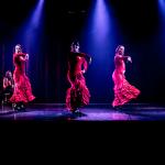 _cia_flamenco
