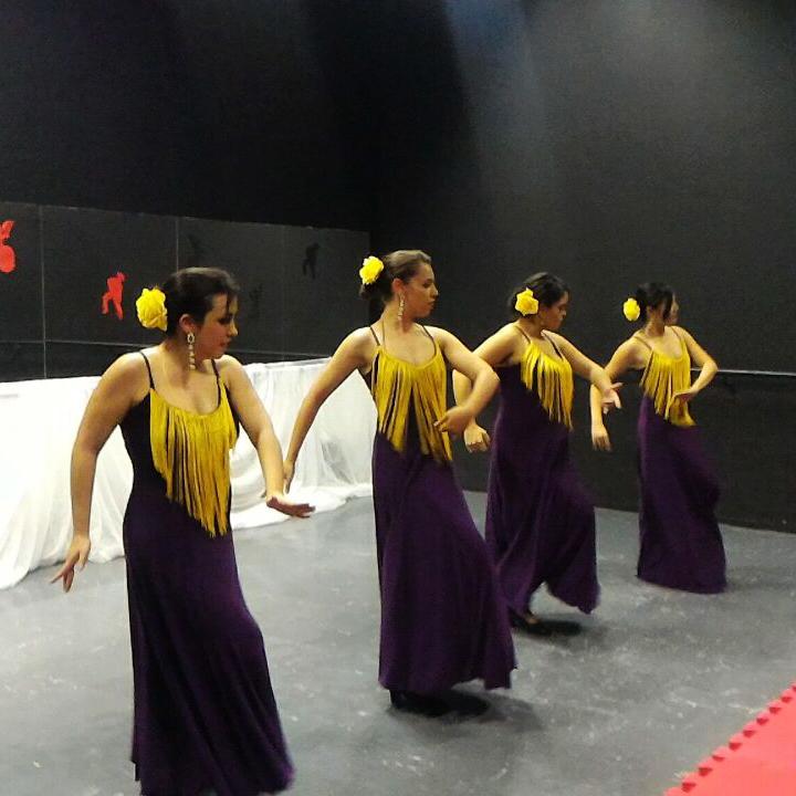 cia flamenco shiva nataraj